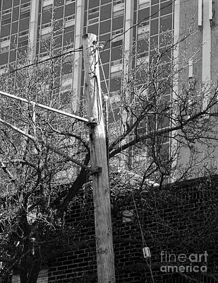 University Of Michigan Digital Art - Old Telephone Pole by Phil Perkins
