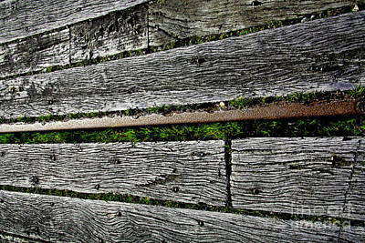 Photograph - Old Timber And Iron by Nareeta Martin
