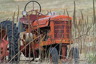 Photograph - Old Timer by Jim Garrison