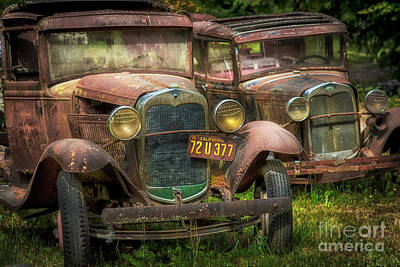 Photograph - Old Timers by Sonya Lang