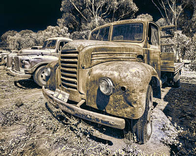 Photograph - Old Timers by Wayne Sherriff