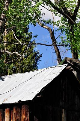 Photograph - Old Tin Roof by Jerry Sodorff
