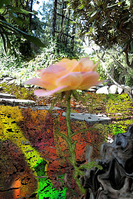 Painting - Old To New - Tiny Rose - Old Root by Marie Jamieson