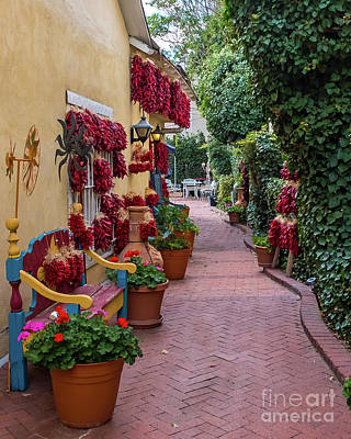 Photograph - Old Town Alley by Stephen Whalen