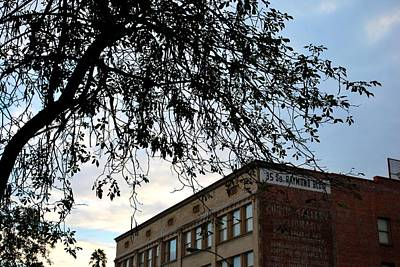 Photograph - Old Town Raymond Building Tree View  by Matt Harang