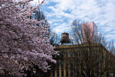 Photograph - Old Town Spring by Steven Clark