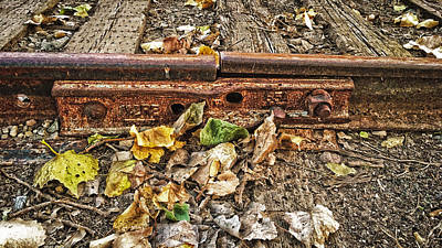 Photograph - Old Tracks by Nathan Little