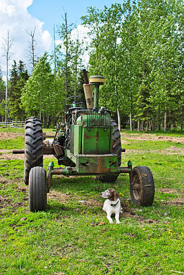 Photograph - Old Tractor, Old Dog by Cathy Mahnke