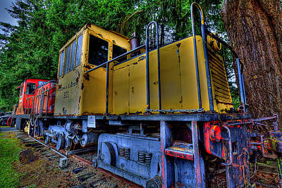 Moody Trees - Old Train by David Patterson