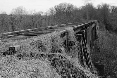 Photograph - Old Train Trestle by Joseph C Hinson Photography