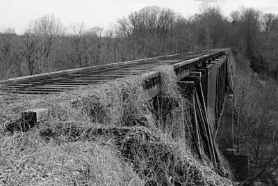 Photograph - Old Train Trestle by Joseph C Hinson Photography