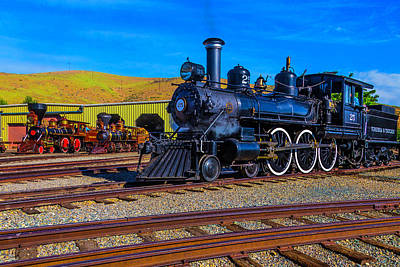 Photograph - Old Trains On Display by Garry Gay