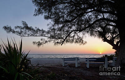 Photograph - Old Tree And Sunrise, Anna Maria Island, Fl #30204 by John Bald