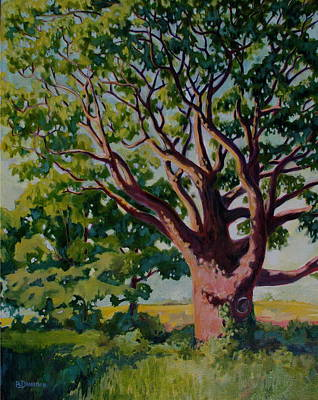 Old Tree Art Print by Andrew Danielsen