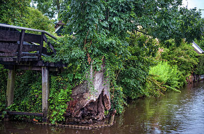 Photograph - Old Tree At The Bridge. Giethoorn. The Netherlands by Jenny Rainbow