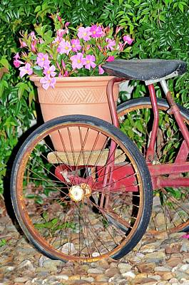 Old Tricycle Art Print by Susan Leggett