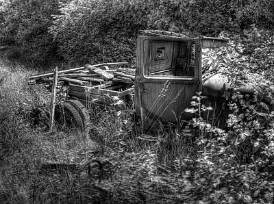 Photograph - Old Truck 7 In The Weeds by Lawrence Christopher