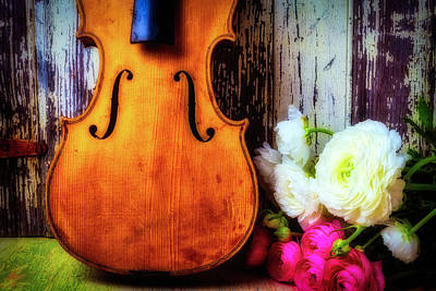 Old Violin And Ranunculus Art Print