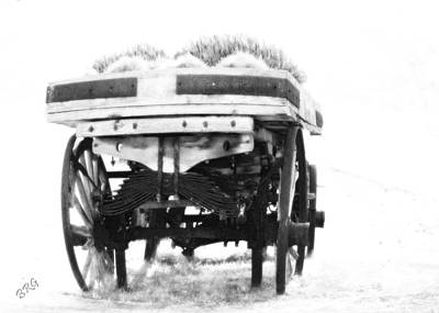 Photograph - Old Wagon Monochrome by Ben and Raisa Gertsberg