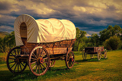 Photograph - Old Wagons by Maria Coulson