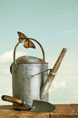 Photograph - Old Watering Can With A Butterfly by Ethiriel Photography