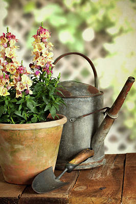 Photograph - Old Watering Can With Plant by Ethiriel Photography