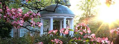 Pharmacies Photograph - Old Well Dogwoods And Sunrise by Matt Plyler