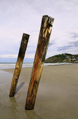 Photograph - Old Wharf Piles  by Nareeta Martin