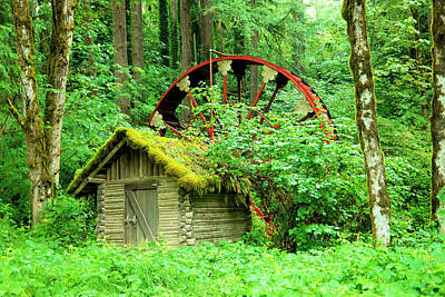 Old Wheel And Cabin Art Print