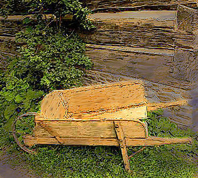 Photograph - Old Wheelbarrow Brushed by Ian  MacDonald