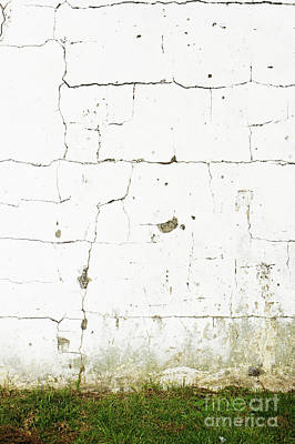 Photograph - Old White Wall by Tom Gowanlock