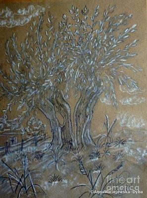 Drawing - Old Willow Tree by Anna Folkartanna Maciejewska-Dyba