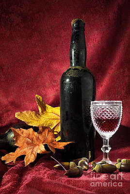 Old Wine Bottle Art Print by Carlos Caetano