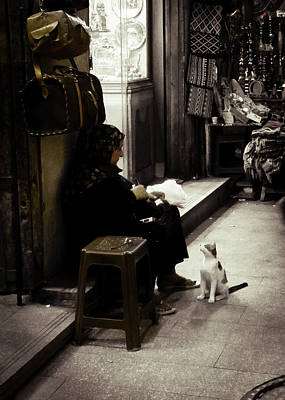 Photograph - Old Woman And Cat by Patrick Kain