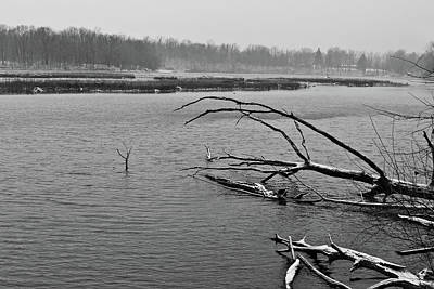 Photograph - Old Woman Creek 2018 - Creek View 2 by Shawna Rowe