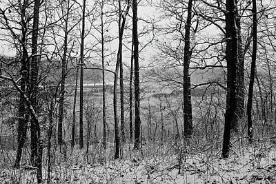 Photograph - Old Woman Creek 2018 - Through The Trees by Shawna Rowe