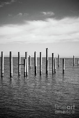 Photograph - Old Wood Pilings In Water by Colleen Kammerer