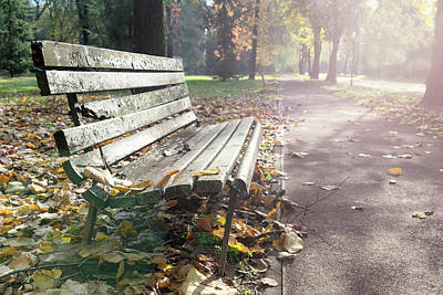Photograph - Rustic Wooden Bench During Late Autumn Season On Bright Day by Alexandre Rotenberg