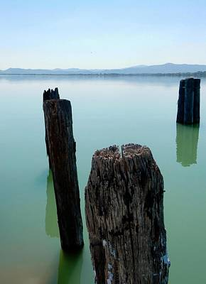 Photograph - Old Wooden Boat Piles by Dorothy Berry-Lound