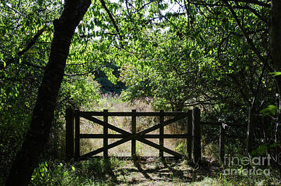 Photograph - Old Wooden Gate by Kennerth and Birgitta Kullman