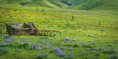 Photograph - Old Wooden Wagon by Don Schwartz