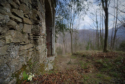 Photograph - Old Woods Iron Gate With Flowers And Mountains by Enrico Pelos