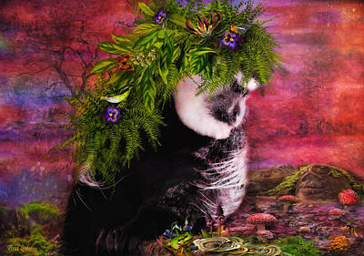 Photograph - Old World Monkey Charmed by Anna Louise