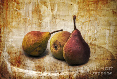 Photograph - Old World Pears by Alana Ranney