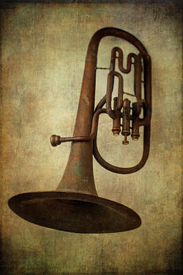 Old Worn Horn Art Print by Garry Gay