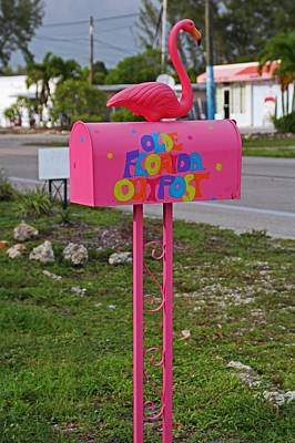 Photograph - Olde Florida Outpost Mailbox by Michiale Schneider