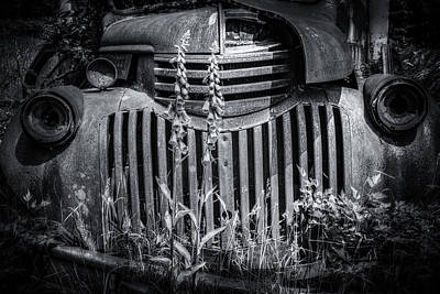 Photograph - Ole Blue Belle by Spencer McDonald