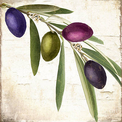 Olive Painting - Olive Branch by Mindy Sommers
