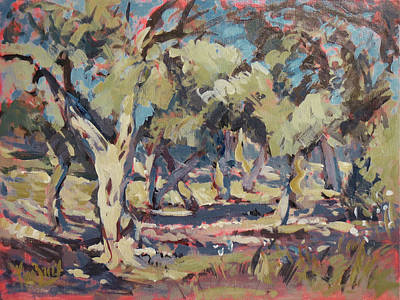 Painting - Olive Grove Along Marmari Beach Paxos by Nop Briex