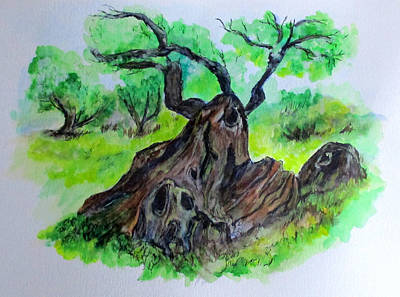 Olive Tree Art Print by Clyde J Kell